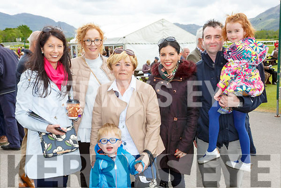 Leanne Tobin Niamh O'Connell, Deli Murphy, Matthew O'Connor, Nicola Tobin, Cathal and Megan O'Connell Killarney at  the Killarney races on Sunday