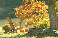 Adirondack chair sits beside lake in glow of orange foliage from sassafras tree
