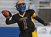 Christian Fredericks #1 of Lawrence throws a pass during the Nassau County Conference III varsity football semifinals against Bethpage at Hofstra University on Saturday, Nov. 11, 2017.