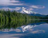 ORCAN_042 - USA, Oregon, Mount Hood National Forest, Northwest side of Mount Hood and conifer forest reflect on calm surface of Lost Lake.