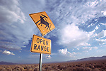 Warning: Cattle Abductions along the Open Range along the Extraterrestrial Highway, SR 375 near Rachel, Nev.