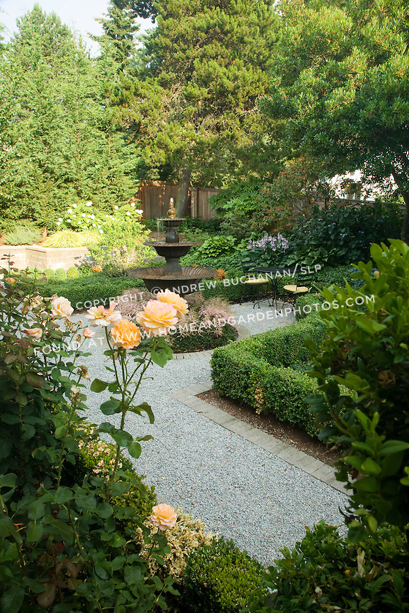 a formal backyard garden, edged with roses, framed by boxwood, and paved with gravel around a central water feature surrounded by astilbe, sits in the quiet late afternoon light behind a home in a suburban community east of Seattle