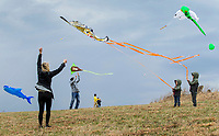NWA Democrat-Gazette/BEN GOFF @NWABENGOFF<br /> Casey Weatherford helps her sons Coleman Weatherford (left), 3, and Aidan Weatherford, 6, of Bentonville launch their tiger kite Saturday, March 23, 2019, during the 29th annual Eureka Springs Kite Festival hosted by Turpentine Creek Wildlife Refuge in Eureka Springs. The free family event included kite making and kites for sale from Keleidokites in Eureka Springs and a variety of food trucks and entertainment. Strong wind kept dozens of kites flying high at any given time.