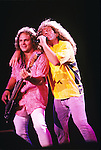 Various live photographs of the rock band, Van Halen