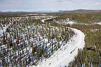 Aerial view of a team as it runs down the trail in *Gold Country* on an old mining road between Takotna and Ophir on Thursday during the 2008 Iditarod