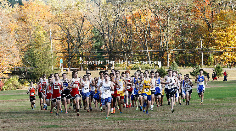 Thomaston, CT- 17 October 2014-101714CM06- Boys take off during the start of the Berkshire League cross country meet at Black Rock State Park in Thomaston on Friday.   Christopher Massa Republican-American
