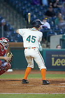 Zac Susi (45) of the Greensboro Grasshoppers at bat against the Hagerstown Suns at First National Bank Field on April 6, 2019 in Greensboro, North Carolina. The Suns defeated the Grasshoppers 6-5. (Brian Westerholt/Four Seam Images)