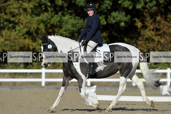 Class 4. Prelim 14. Unaffiliated Dressage. Brook Farm Training Centre. Essex. 06/11/2016. MANDATORY Credit Garry Bowden/Sportinpictures - NO UNAUTHORISED USE - 07837 394578