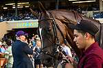 DEL MAR, CA  SEPTEMBER 1: #9 Vasilika, and her groom,  after winning the John C. Mabee Stakes (Grade ll), on September 1, 2018 at Del Mar Thoroughbred Club in Del Mar, CA.(Photo by Casey Phillips/Eclipse Sportswire/Getty ImagesGetty Images