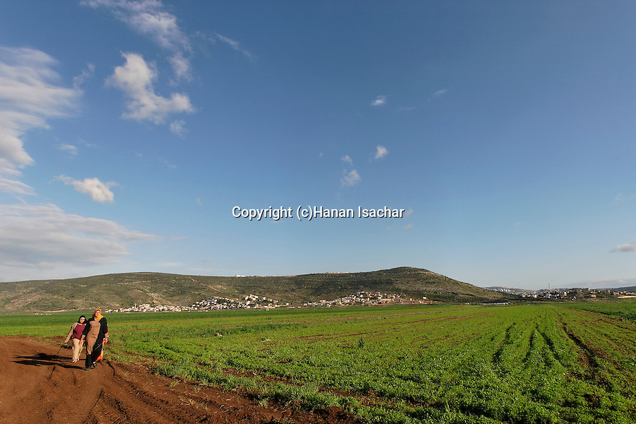 Israel, the Lower Galilee. Beth Natofa valley.
