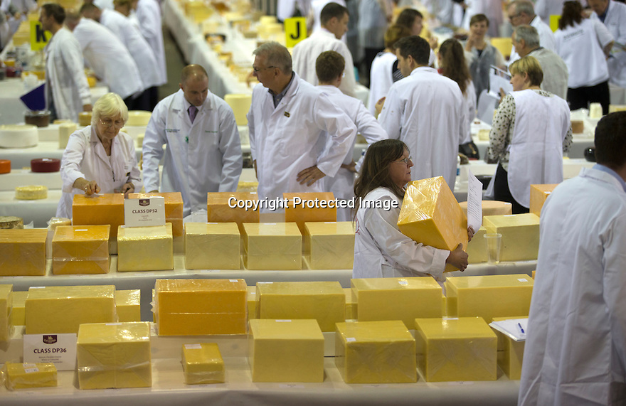 26/06/16<br /> <br /> 2016 UK overall champion - Arla Foods - Taw Valley Creamery. Full list of results: http://www.internationalcheeseawards.co.uk/files/Trophy-Winners-2016.pdf<br /> <br /> <br /> It takes more than 250 judges to work their way through the 5,000 plus cheeses being shown at the annual International Cheese Awards, being held in Nantwich. <br /> <br /> Judges look for winning combinations of flavour, aroma, texture and appearance before announcing the overall show winner. <br /> <br /> The show is the world's biggest cheese competition and attracts entries from as far afield as New Zealand and Australia with around half the cheese coming from the UK.<br /> <br /> All Rights Reserved, F Stop Press Ltd. +44 (0)1773 550665