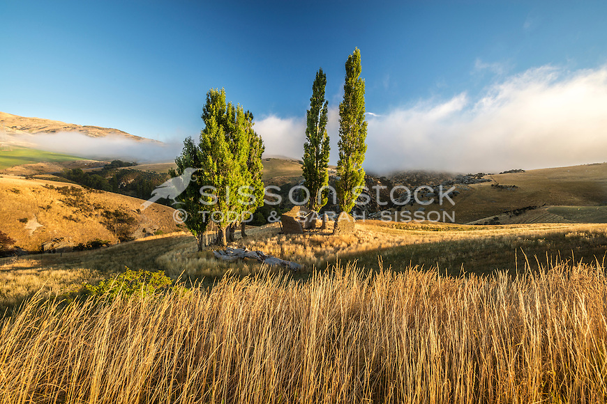 Early morning, Old Hut, Central Otago, South Island, New Zealand - stock photo, canvas, fine art print