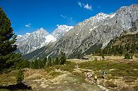 Oesterreich, Ost-Tirol: Wandern beim Staller Sattel unterhalb der Riesenfernergruppe am Ende des Defereggentals | Austria, East-Tyrol: hiking near Staller Sattel passroad below Riesenferner Group mountains in Defereggen Valley