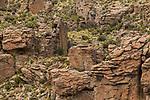 Sandstone rock formations, Abra Granada, Andes, northwestern Argentina