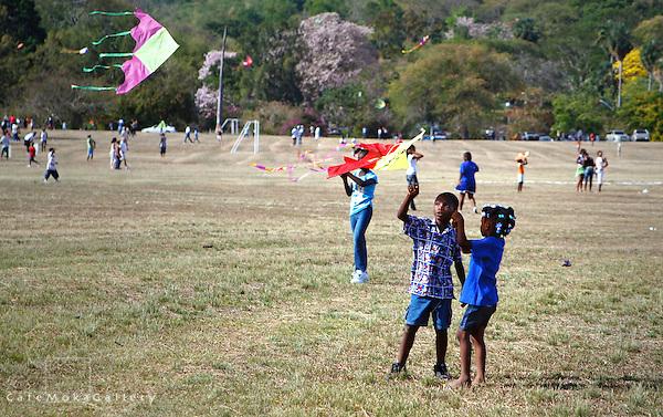 Children kite-flying on the Savannah at Easter time