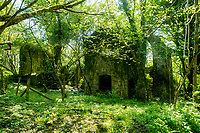 Tenby, Pembrokeshire, Wales, UK