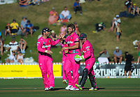 190112 Super Smash T20 Cricket - Wellington Firebirds v Northern Knights