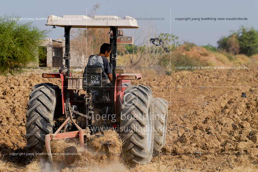 JORDAN, water shortage and agriculture in the Jordan valley , vegetable cultivation / JORDANIEN Wassermangel und Landwirtschaft im Jordan Tal, Gemueseanbau