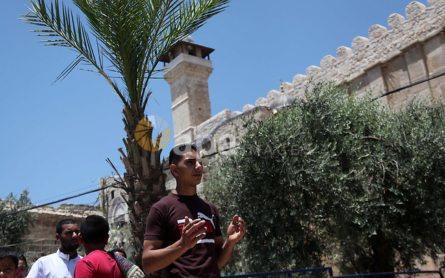 """Palestinian muslims attend Friday prayers, the first of Islam's holy month of Ramadan, at Ibrahimi mosque """"Sanctuary of Abraham"""", in the West Bank City of Hebron July 04, 2014. Photo by Mamoun Wazwaz"""