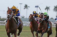 HALLANDALE BEACH, FL - MARCH 31:   Argentine Bred #3 Hi Happy with jockey Luis Saez on board, wins the Pan American Stakes GII at Gulfstream Park on March 31, 2018 in Hallandale Beach, Florida. (Photo by Liz Lamont/Eclipse Sportswire/Getty Images)