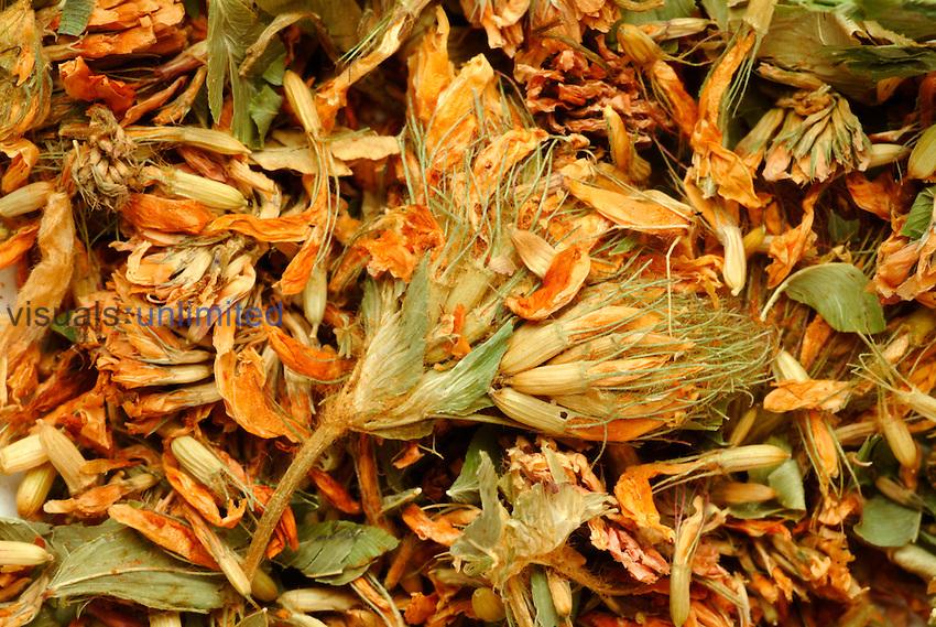 White clover blossoms -  medicinal plant -  dried -  dry -  for tea -  Trifolium repens