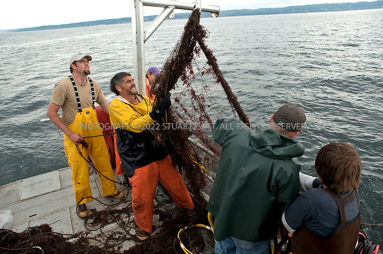 8/14/2009--Puget Sound, Seattle, WA, USA..Steve Sigo (second from left) and crew on the Twila Dawn pull old nets up from  the bottom of Puget Sound, and onto the deck of the boat...Jeff Choke, a member of the Nisqually Indian tribe in Washington State, and director of marketing for Nisqually Aquatic Technologies, a  diving company, has been hired using federal stimulus dollars to remove old nets in Puget Sound that destroy habitat and kill fish and other marine animals. The Nisqually indians are one of many tribes whose fishing has been affected by the big commercial fishing nets that came to deplete fish populations and damage the Sound....©2009 Stuart Isett. All rights reserved.