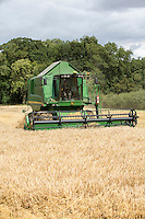 Harvesting Propino spring barley with a John Deere T550 Hillside combine - August, Lincolnshire