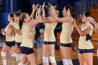 FIU Volleyball 2008 (Combined)