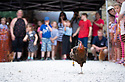 04/08/19<br /> <br /> Chicken run!<br /> <br /> Hundreds of spectators watch as competitors race their hens at the World Championship Hen Racing on a purpose-built track outside the Barley Mow pub in Bonsall, in the Derbyshire Peak District.<br />  <br /> All Rights Reserved, F Stop Press Ltd +44 (0)7765 242650 www.fstoppress.com rod@fstoppress.com