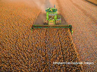 63801-09306 Soybean Harvest, John Deere combine harvesting soybeans - aerial - Marion Co. IL
