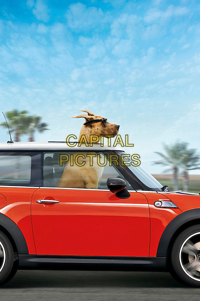 KEY POSTER ART.in Marmaduke (2010).*Filmstill - Editorial Use Only*.CAP/FB.Supplied by Capital Pictures.