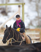 Wyoming cowgirl, Skye Clark Working cows, Afton Wyoming<br />
