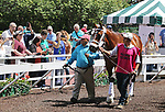 Maximum Security schools in the paddock at Monmouth Park in Oceanport, New Jersey on Saturday May 18, 2019. Photo By Bill Denver/EQUI-PHOTO