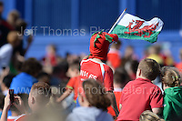 Fans at the stadium waiting for the Wales squad to arrive  on an open top bus during the homecoming celebrations at the Cardiff City stadium on Friday 8th July 2016 for the Euro 2016 Wales International football squad.<br /> <br /> <br /> Jeff Thomas Photography -  www.jaypics.photoshelter.com - <br /> e-mail swansea1001@hotmail.co.uk -<br /> Mob: 07837 386244 -