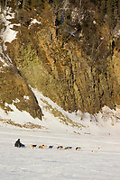 Hugh Neff mushing near Anvik along the steep bank of the Yukon River