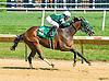 Quality Hey winning at Delaware Park on 7/14/16