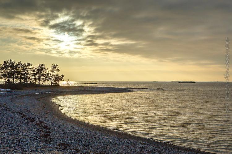 Sol över udde och strand på Torö i Stockholms skärgård vid havets rand.