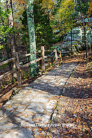 63895-16206 Trail at Garden of the Gods Recreation Area Shawnee National Forest IL