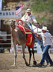 Shane Harrington and Charles Dillon help guide Kristy Bond's camel toward the finish line during the 54th International Camel Races in Virginia City, Nev., on Friday, Sept. 6, 2013.  <br /> Photo by Cathleen Allison