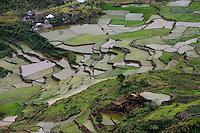 PHILIPPINES, Mountain Province, Cordilleras, rice farming on rice terrace in mountains near Sagada / PHILIPPINEN, Mountain Province, Cordilleras, Reisanbau und Reisfelder in Terrassen in den Bergen bei Sagada