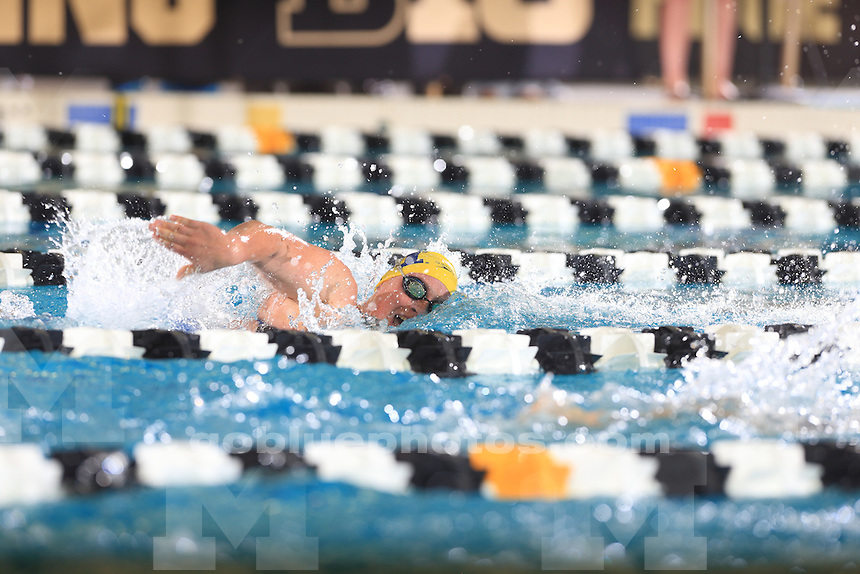 The University of Michigan women's swimming and diving team compete at the 2017 Women's Big Ten Championships at Purdue University on Feb. 16, 2017.
