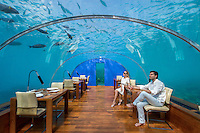 Maldives, Rangali Island. Conrad Hilton Resort. Couple in Ithaa underwater restaurant (MR).