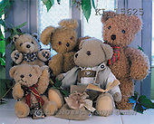 Interlitho, Alberto, CUTE ANIMALS, teddies, photos, 5 teddies(KL15625,#AC#)