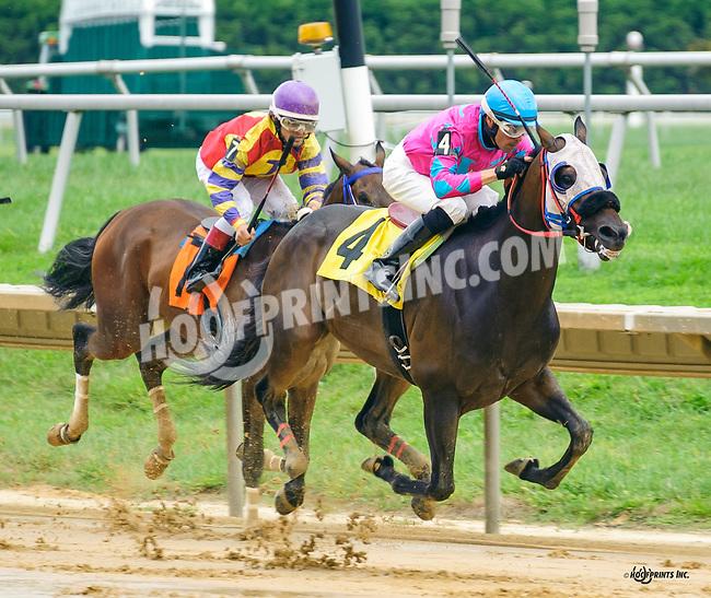Booboothebarbarian winning at Delaware Park on 9/1/16