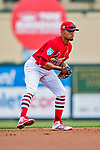 24 February 2019: St. Louis Cardinals top prospect infielder Edmundo Sosa in action during a Spring Training game against the Washington Nationals at Roger Dean Stadium in Jupiter, Florida. The Cardinals fell to the Nationals 12-2 in Grapefruit League play. Mandatory Credit: Ed Wolfstein Photo *** RAW (NEF) Image File Available ***