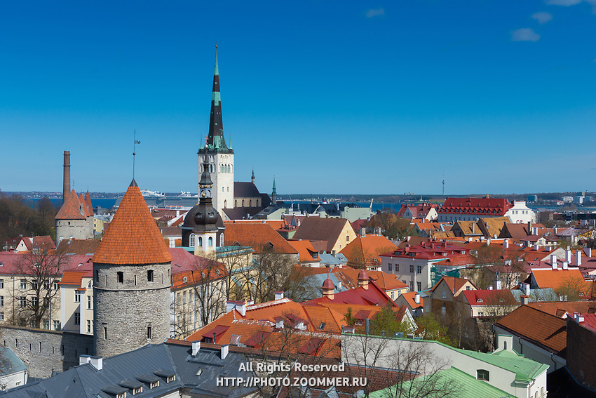 Tallinn old town skyline from the top
