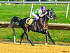 Jimdandy Totherehessq winning at Delaware Park on 10/5/16<br /> 3 yo colt bred in Virginia by Cre Run Enterprises (Dahess - In Awe)