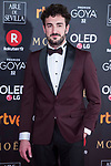 Miki Esparto attends red carpet of Goya Cinema Awards 2018 at Madrid Marriott Auditorium in Madrid , Spain. February 03, 2018. (ALTERPHOTOS/Borja B.Hojas)