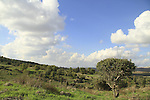 Israel, Shephelah, a view from Tel Ayalon
