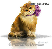 Marcello, REALISTIC ANIMALS, REALISTISCHE TIERE, ANIMALES REALISTICOS, paintings+++++,ITMCEDC1106A,#A# ,cats ,kittens